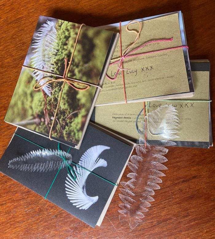 Sample packs of cards